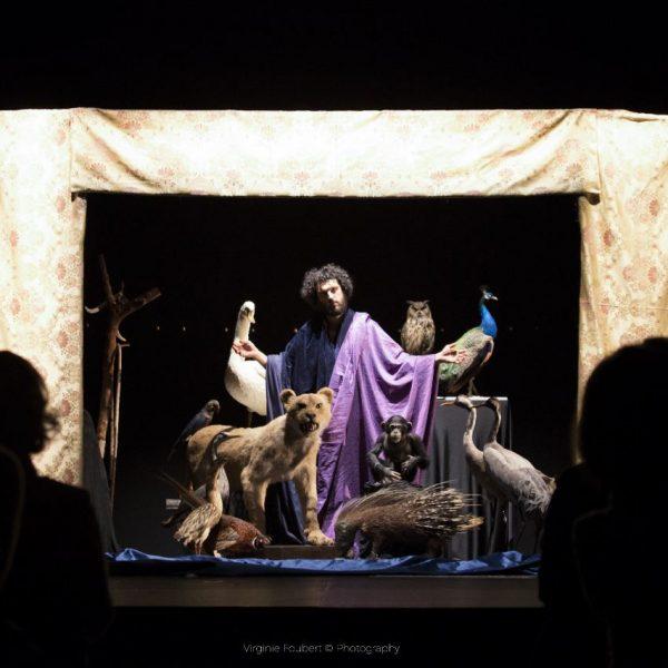 tableau vivant Creazione degli animali Giovanni da Udine